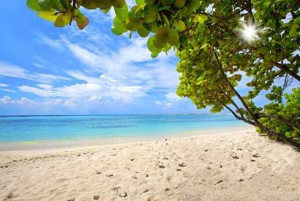 AUA-Aruba-Baby-Beach_shtstk