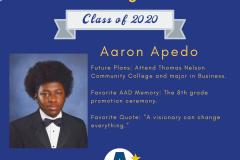 Aaron Apedo